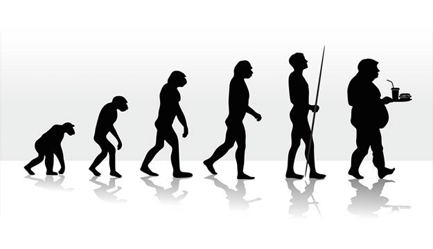 Why food evolution and human evolution are at odds with each other